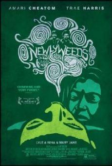 Ver película Newlyweeds