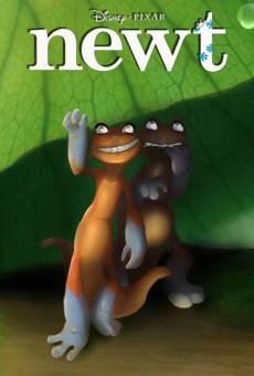 Ver película Newt