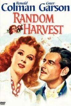 Random Harvest on-line gratuito