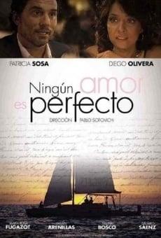 Ver película Ningún amor es perfecto