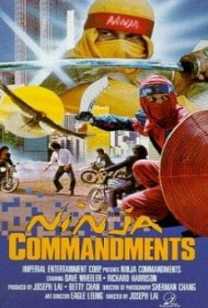Ver película Ninja Commandments