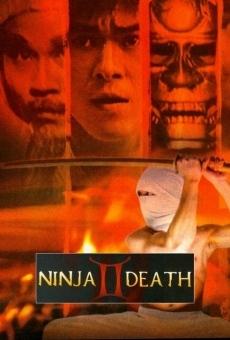 Ver película Ninja Death 2