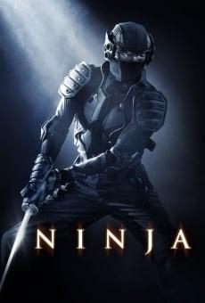 Ver película Ninja: el guerrero silencioso