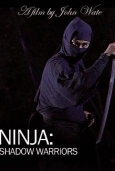 Ver película Guerreros Ninja de las Sombras