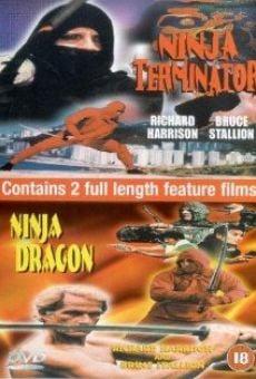 Ver película Ninja Terminator