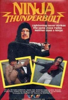 Ver película Ninja Thunderbolt