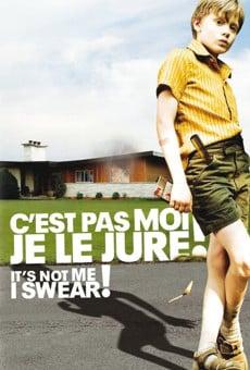 C'est pas moi, je le jure! (It's Not Me, I Swear!) online free