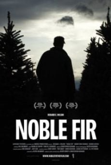 Noble Fir on-line gratuito