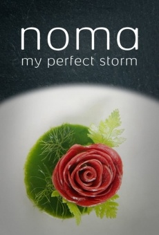 Noma: My Perfect Storm online streaming