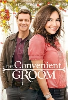 The Convenient Groom online free