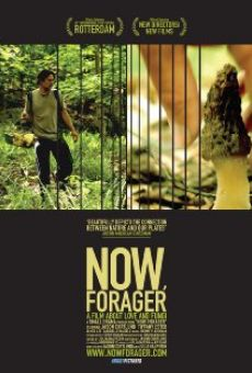 Watch Now, Forager online stream