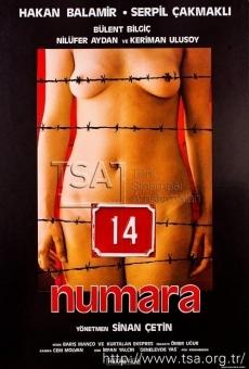 Ver película Number 14