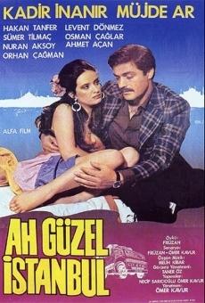 Ver película Oh Beautiful Istanbul