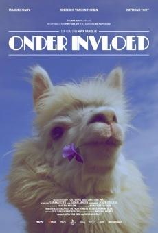 Ver película Onder Invloed