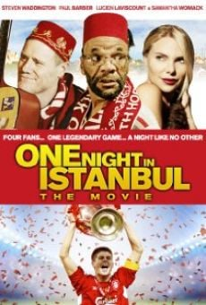 Ver película One Night in Istanbul