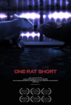 Ver película One Rat Short