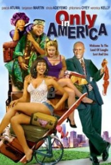 Ver película Only in America