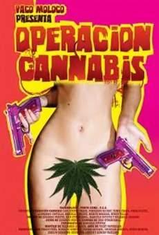 Ver película Operación Cannabis