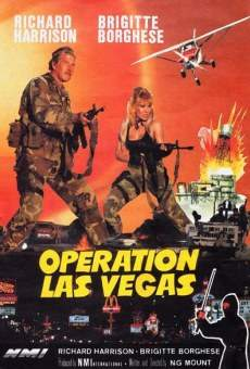Ver película Operación en Las Vegas