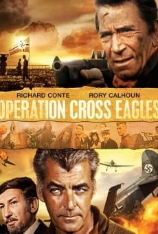 Operation Cross Eagles on-line gratuito