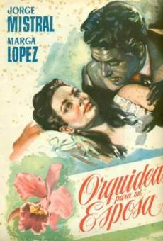 Ver película Orquídeas para mi esposa