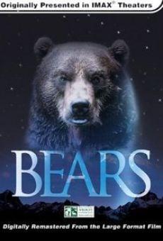 Koda, fratello orso online