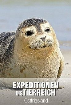 Ostfriesland - sieben Inseln und ein Meer online kostenlos