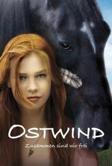 Windstorm - Liberi nel vento online
