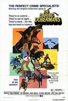 Ver película Otra vez al ataque, Dobermans