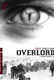 Ver película Overlord