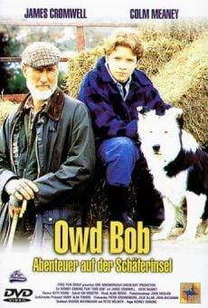 Ver película Owd Bob