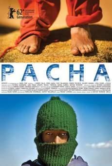 Ver película Pacha