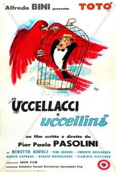 Uccellacci e uccellini online streaming