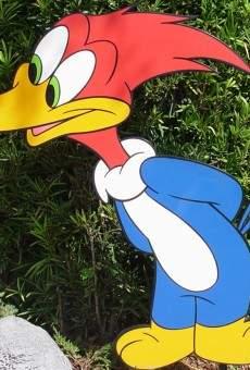 Pájaro loco online