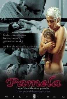 Ver película Pamela: Secretos de una pasión