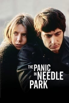 The Panic in Needle Park on-line gratuito