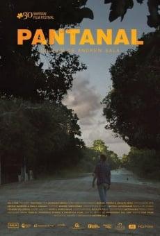 Ver película Pantanal