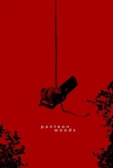 Ver película Bosque de Panteón