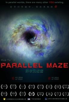 Parallel Maze en ligne gratuit