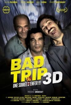 Ver película Paranormal Bad Trip 3D