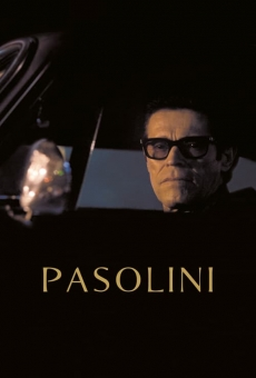 Pasolini on-line gratuito