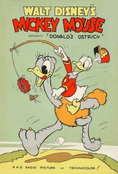 Donald Duck: Donald's Ostrich online streaming