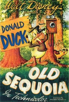 Walt Disney's Donald Duck: Old Sequoia on-line gratuito