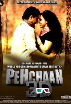 Ver película Pehchaan 3D