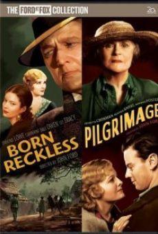 Ver película Peregrinos