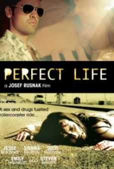 Ver película Perfect Life