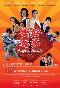 Ver película Perfect Rivals