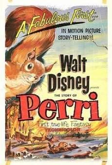 Ver película Perri