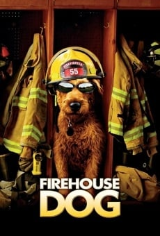 Perro al rescate
