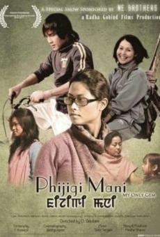 Ver película Phijigi Mani
